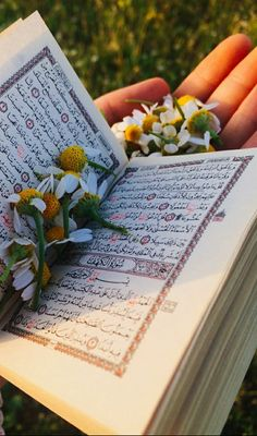 Quran Wallpaper, Cute Wallpaper Backgrounds, Cute Wallpapers, Islamic Qoutes, Islamic Inspirational Quotes, Allah Islam, Islam Quran, Happy With My Life, Quran Book