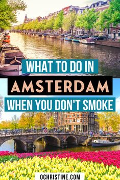 What to do in Amsterdam when you don't smoke weed. Amsterdam is an amazing city and there is so much to do in Amsterdam outside of coffee shops. Don't skip Amsterdam because you don't smoke and make sure you check out my list of the best things to do in Amsterdam. | Amsterdam travel | best things to do in Amsterdam | Amsterdam itinerary | Amsterdam travel guide | #amsterdam #netherlands