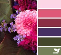 """""""flora palette"""" In which the darker colors predominate. Feels warmer somehow. Scheme Color, Colour Pallette, Color Palate, Colour Schemes, Color Combos, Color Patterns, Design Seeds, Color Swatches, Color Card"""