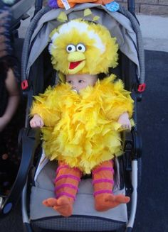 This is Jaxon, 5 months old, in his Big Bird costume. While I was pregnant with him my best friend and I nicknamed him Big Bird. So it only seemed fitting to make him Big Bird for Halloween. Costume Halloween, Halloween Bebes, Amazing Halloween Costumes, Halloween Kostüm, Halloween Outfits, Halloween Clothes, Pregnant Halloween, Homemade Halloween, Ewok Costume