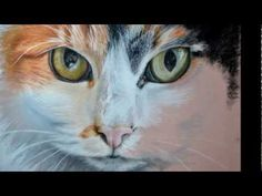 ▶ Pansy Cat painting\drawing in pastel (step by step) - YouTube