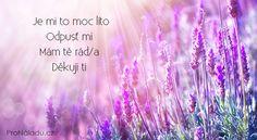 Zázračné Ho´oponopono | ProNáladu.cz Reiki, Peace, Mantra, Zodiac, Fitness, Hampers, Psychology, Horoscope, Sobriety