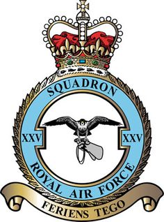 #25 Squadron was formed at Montrose in Scotland on 25 September 1915 from the personnel of #6 Reserve Squadron. Moving to France in February 1916, the Squadron took up fighter/reconnaissance patrols over the Western Front with two-seat FE2Bs. During 1917, the Squadron transferred to long-range reconnaissance and high-altitude bombing with newly received DH4s. After moving to Germany as part of the occupation forces,returned to the UK and disbanded in January 1920.