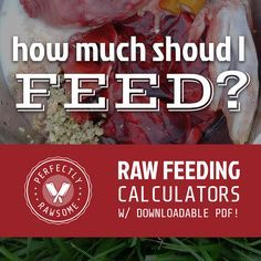 Prey Model Raw (PMR) and Biologically Appropriate Raw Foods (BARF) daily maintenance feeding requirement calculators for cats and dogs.