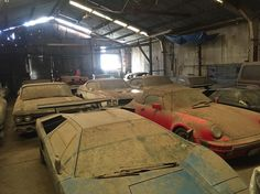 Barn Find filled with Lamborghini Countach's, a Ferrari 400 automatic, Porsche 911, Lamborghini epsada, 67 Shelby gt500, Buick gsx's, Cadillacs, and 69 hemi charger. Most of these cars have been parked since the 80's and have low original miles.