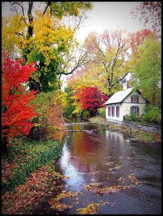A beautiful cottage by the river in the fall. Complete peace.