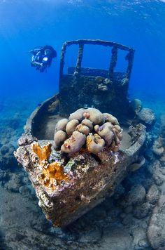 Shipwreck diving in Curaçao