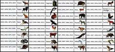 Как узнать свое тотемное животное