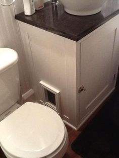 "Modified bathroom vanity to incorporate cat's litter box! Cut a hole in side of vanity and glued on a picture frame to exterior of vanity. Pinner stated: ""My cat loves this! And now I don't get cat litter strewn all over my bathroom! Hiding Cat Litter Box, Diy Litter Box, Hidden Litter Boxes, Cat Litter Box Enclosure, Bathroom Sink Cabinets, Diy Bathroom, Bathroom Vanities, Bathroom Green, Small Bathroom"