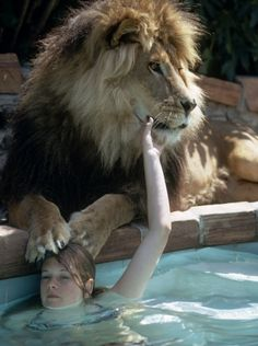 Melanie Griffith hanging out with her pet lion Neil at her Sherman Oaks, Calif. home in May 1971.