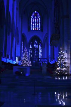 church A good blue Christmas shall be had by all. Noel Christmas, Christmas Colors, Winter Christmas, All Things Christmas, Blue Christmas Lights, Christmas Feeling, Azul Anil, Photo Bleu, Himmelblau