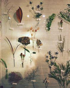 いいね!73件、コメント1件 ― infini.さん(@infini.fleur)のInstagramアカウント: 「 #infinifleur #wedding #welcomespace #wall #flowerwall #dryflower #autumn #秋 #結婚式 #ウェルカムスペース…」