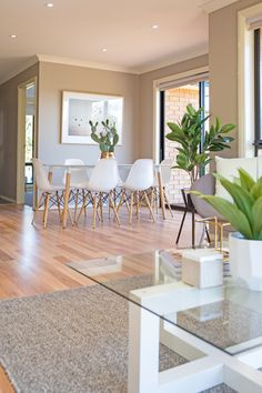 Open plan kitchen, dining and living room, small living, grey wool knotted floor rug, neutral decor, beige walls, timber floating floorboards, glass top coffee table, eames dining table, eames dining chairs, cactus