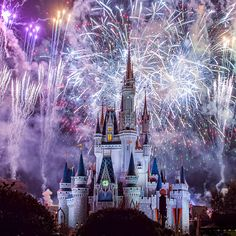 Have a Magical Night!