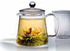 Fehér teás virágzó tea teáskannában.