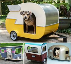 DIY  Pet Camper House,  How adorable does it look! :)