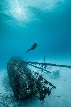 Lady Elliot Island (Australia) by Darren Jew #freediving #wreck