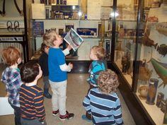 Children in museums schools in museums community local museums Wardown park museum Luton England volunteering museum makers source: Young visitors looking features of animals