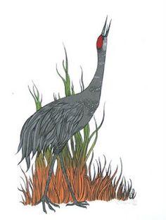 Sandhill Crane- Baraboo, Wi-the Tiny Aviary