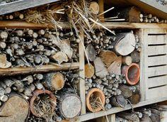 Fabriquer des abris pour les insectes : explication des différentes demeures aimées par les différents types d'insectes et méthode de fabrication - tutoriel en français - French DIY for bug houses