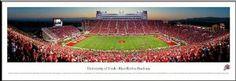 University of Utah Utes Framed Panoramic Photo