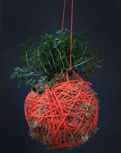 Yarn Ball Hanging Plants Image 2