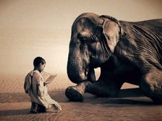 """Gregory Colbert Bilderserie """"Ashes and Snow"""""""