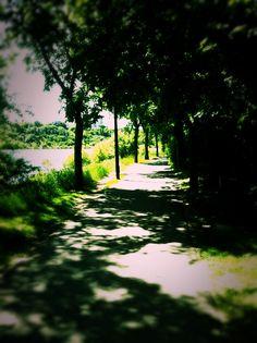 River Walk along Spadina Crescent, Saskatoon SK. Canadian Prairies, Saskatchewan Canada, O Canada, River Walk, Le Far West, Rocky Mountains, Beautiful World, Paths, Places To Visit