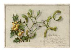 §§§ : mistletoe greeting : ca.1900