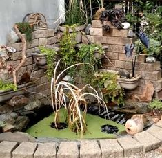 This is the pond feature I built in a corner of our yard. The challenge is the raccoons who occasionally visit it. Raccoons, Water Features, Garden Bridge, Pond, Relax, Corner, Challenges, Outdoor Structures, Gardening
