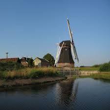 windmolen - Google zoeken
