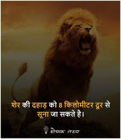 Wow Facts, Real Facts, Crazy Facts, Weird Facts, Daily Facts, Gernal Knowledge, General Knowledge Facts, Knowledge Quotes, Funny Quotes In Hindi