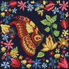 borboleta fundo preto