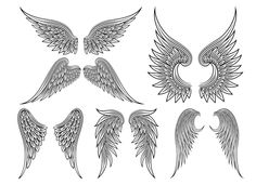 Vector heraldic wings or angel by Microvector on Creative Market