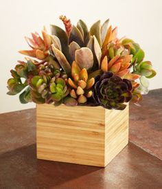 really like the wooden box. mybe some orange and fire calla lillies or orange and pink rose petals around it on table?