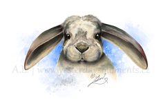 Lop Bunny digital art