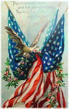 And eagle to symbolize our land #eagle #symbol