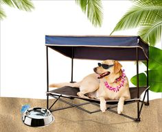Keep your pet tropi-cool with this outdoor pet shade.
