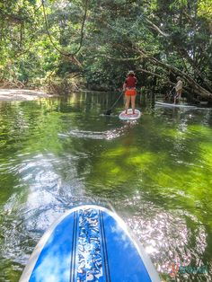 Stand Up Paddle Boarding, Mossman River, Queensland, Australia. Hoping to travel to Australia in the next few years. Queensland Australia, Australia Travel, Australia Honeymoon, Coast Australia, Visit Australia, South Australia, Western Australia, Cairns, Paddle Boarding
