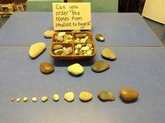 Natural sorting and ordering - Mathe Ideen 2020 Maths Eyfs, Preschool Classroom, Kindergarten Activities, Numeracy, Sorting Kindergarten, Measurement Kindergarten, Preschool Centers, Reggio Emilia, Reggio Inspired Classrooms