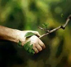 Cuida la madre tierra!