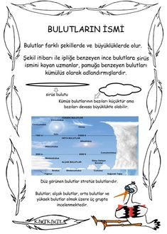 Names of clouds - science activities - some information pages Science For Kids, Science Activities, Reggio Emilia, Pre School, Human Body, Classroom, Clouds, Education, Picasa