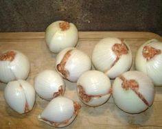 Onion bombs - fun camping recipe (seasoned beef, ground turkey, or make mini meatloafs)