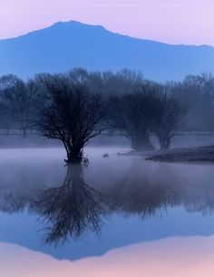 Photograph Misty Reflection by Sergio Cameno on 500px