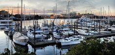 Fisherman's Wharf is located just around the corner from Victoria's Inner Harbour (Downtown, Victoria, B.C). Fishermen work and some live on the boats that line the wharf... ☁. ©YasminSimpsonPhotography
