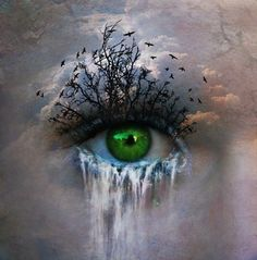 World, eye, trees, waterfall, tears, green, cloudy.