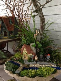 The Miniature and Fairy Garden Entries from the Great Annual Miniature Garden…