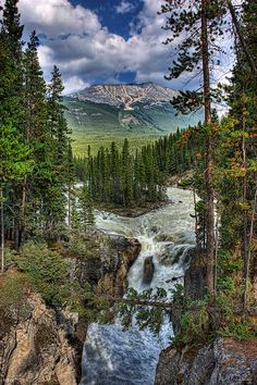 Sunwapta Falls in Jasper National Park, Canada