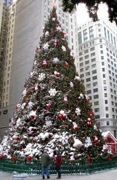 Christmas in Chicago. Learn about the Chicago Christmas Market and get tips for other seasonal attractions and activities that you won't want to miss.