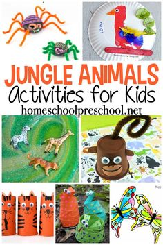 These jungle animal activities will help you teach your preschoolers about the animals, bugs, and creatures that live in the jungle. animals 25 Jungle Animal Activities for Preschoolers Jungle Theme Activities, Preschool Jungle, Jungle Crafts, Animal Activities For Kids, Animal Crafts For Kids, Creative Activities, Toddler Crafts, Preschool Activities, Preschool Classroom